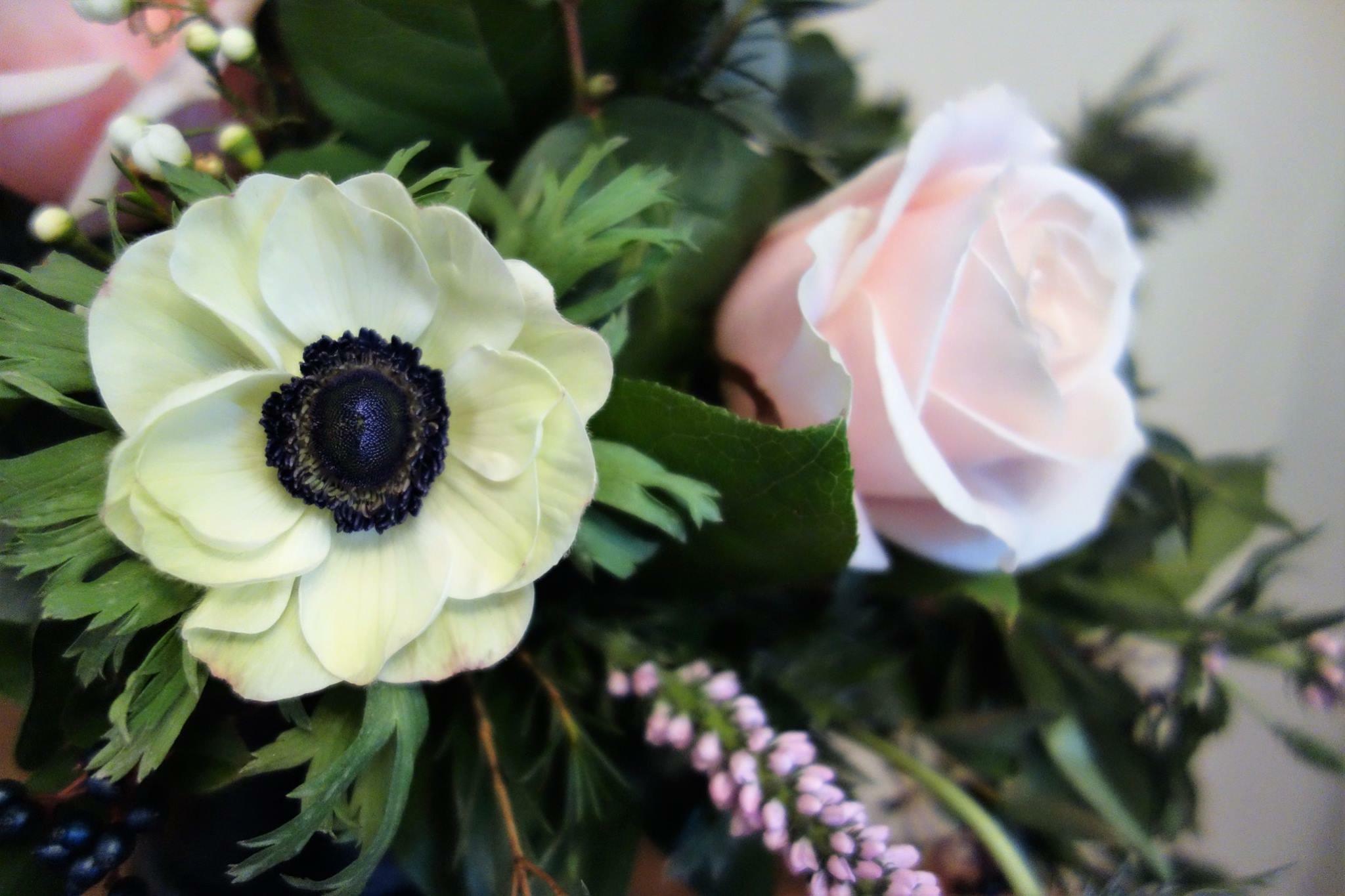 Sympathy & Funeral